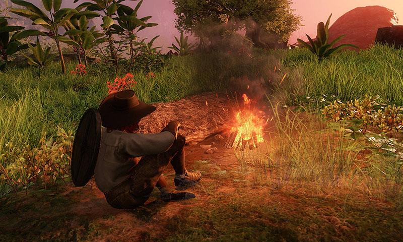 New World Campfires